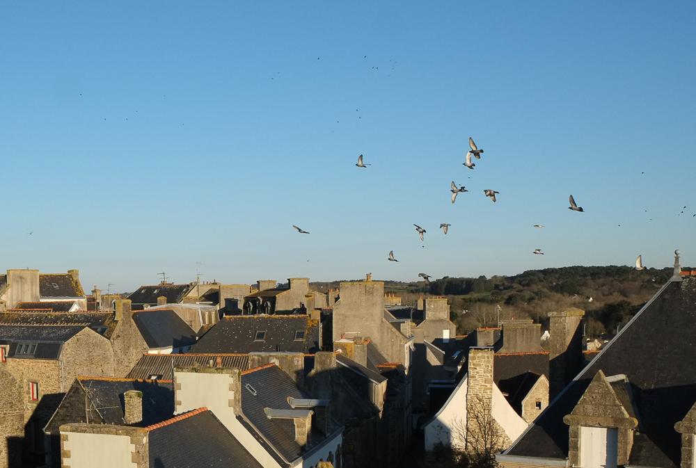 Les toits de Pont-Croix